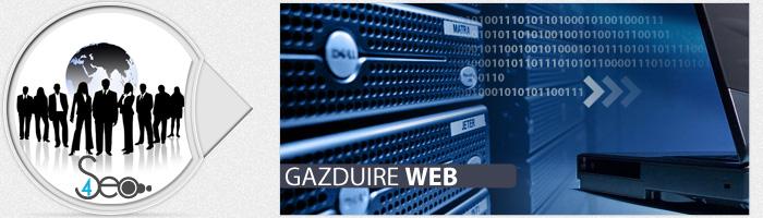 Gazduire Web SEO